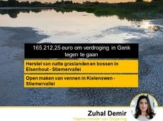 165000 euro Vlaamse subsidies om verdroging in Genk tegen te gaan